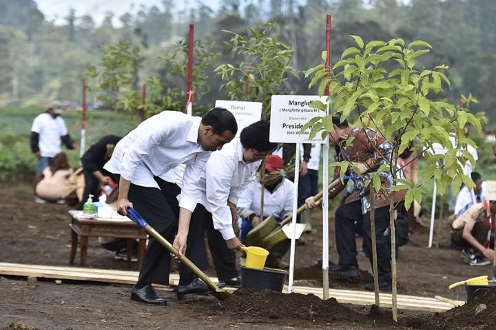 Jokowi Targetkan Revitalisai Sungai Citarum Selesai 7 Tahun