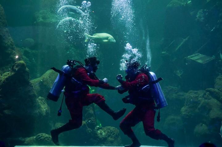 Serunya Melihat Ondel-Ondel di Dalam Air Seaworld Ancol