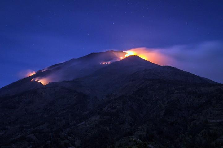 Kebakaran Landa Hutan Gunung Merbabu