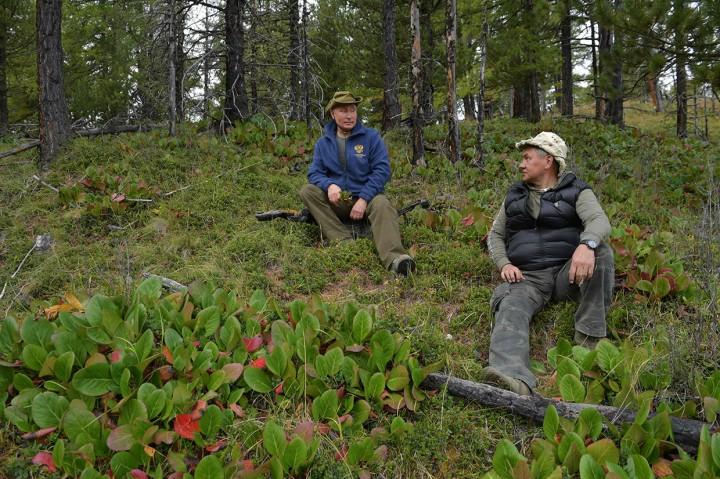 Ultah ke-67, Putin Mendaki Gunung di Siberia