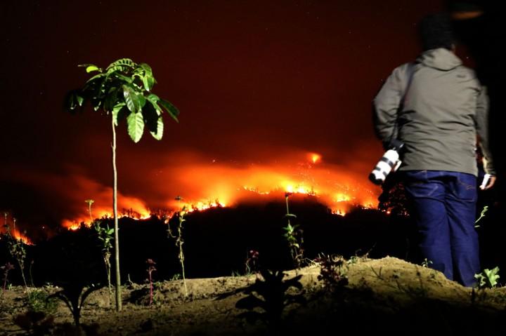 Kebakaran Landa Tiga Gunung Di Banyuwangi Medcom Id