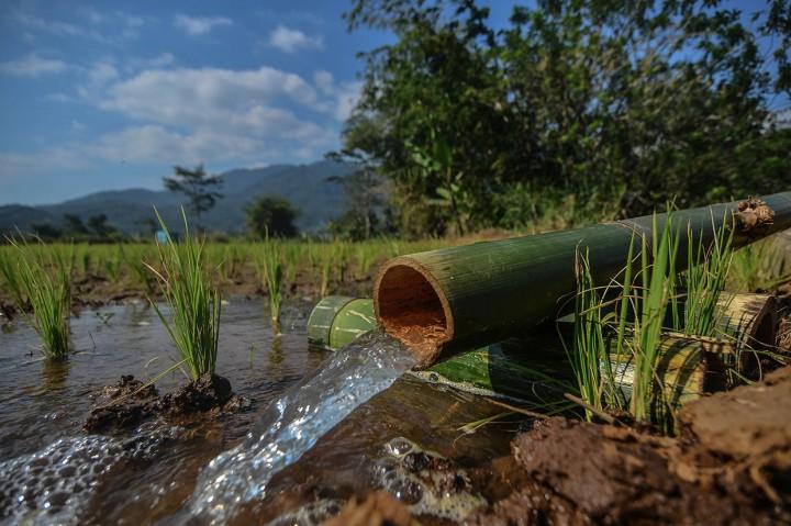 Jasa Kincir Air di Kala Kemarau