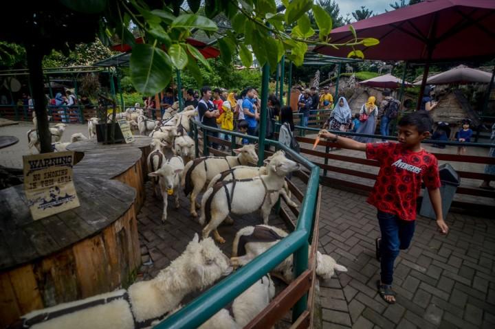 Ayo Kunjungi Wisata Farm House Lembang