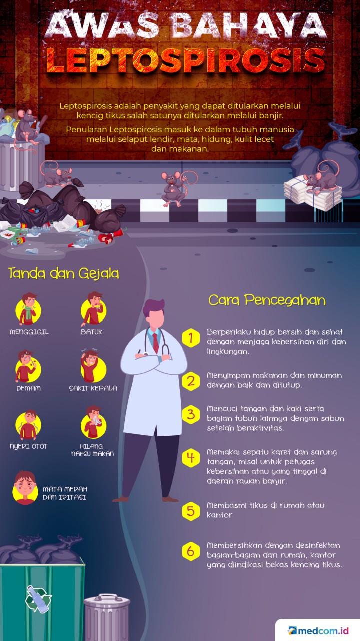 Waspadai Bahaya Leptospirosis