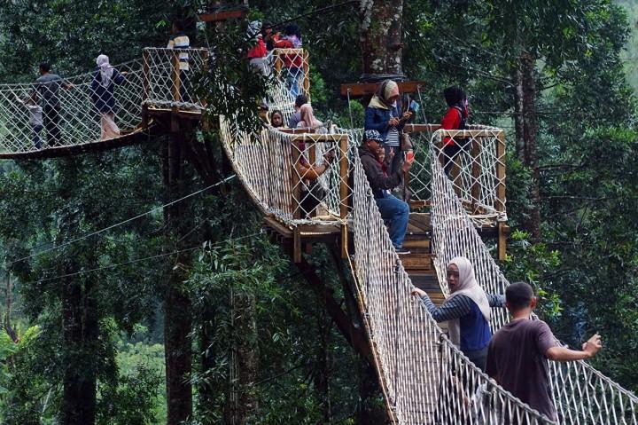 Berwisata ke Forest Bridge di Kabupaten Batang