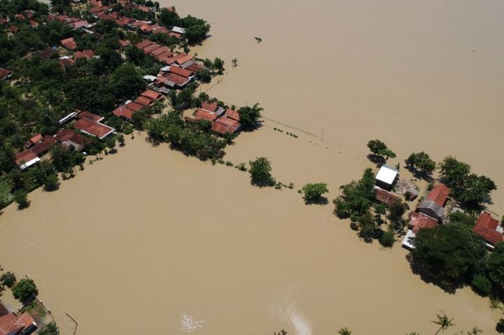 Banjir Genangi Belasan Hektare Sawah di Pekalongan