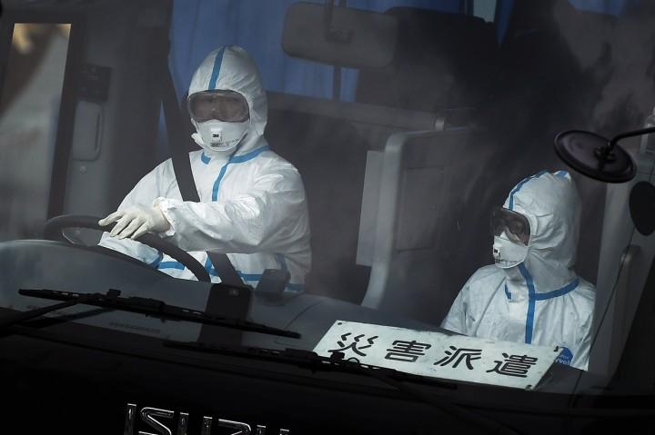 Jepang Evakuasi Penumpang Lansia dari Kapal Pesiar Diamond