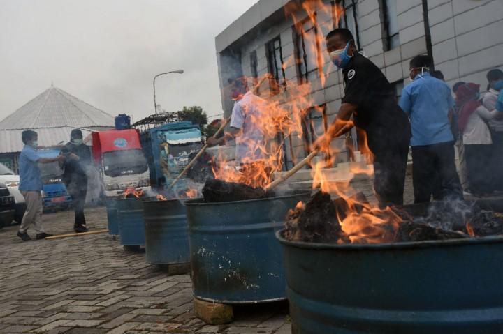 BNNP Banten Musnahkan 50 Kg Ganja