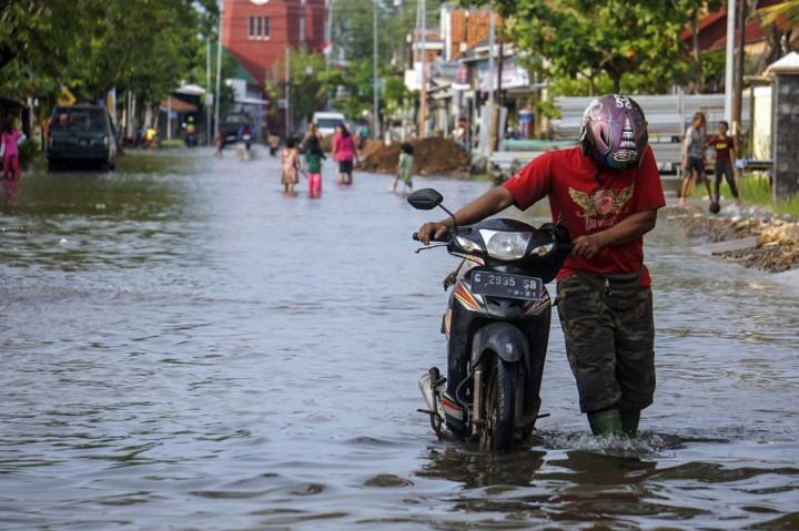 Potret Banjir Rob di Pesisir Pekalongan Utara dan Demak