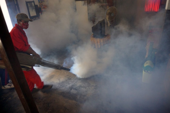 Puluhan Warga Tulungagung Derita Cikungunya