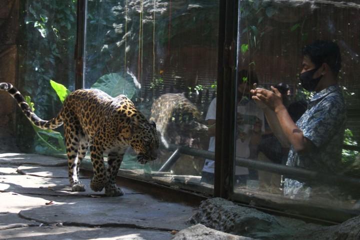 Destinasi Wisata Jatim Park Mulai Dibuka untuk Wisatawan
