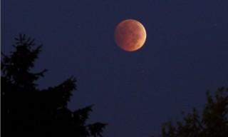 Gerhana Bulan Total, Warga Temanggung Gelar Salat Sunah