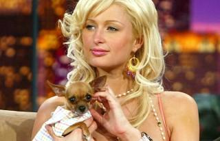 Duh.... Paris Hilton Patah Hati