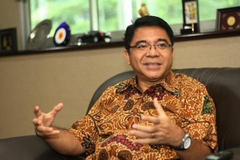 Mengintip Peluang Investasi Hijau di Indonesia