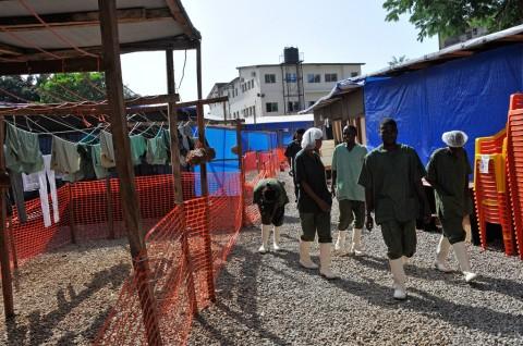 WHO: Angka Kematian Akibat Ebola Lewati 11 Ribu