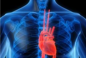 Kenali Penyakit Kardiovaskular & Pencegahannya