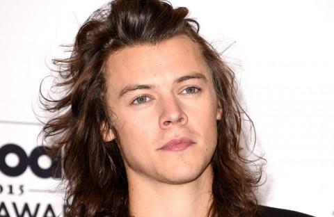 Harry Styles Dijadikan Tokoh Novel Erotis