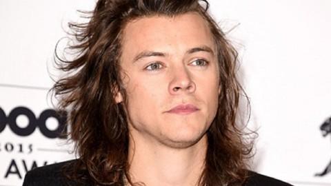 Harry Styles Ingin Bisnis Properti Saat One Direction Vakum
