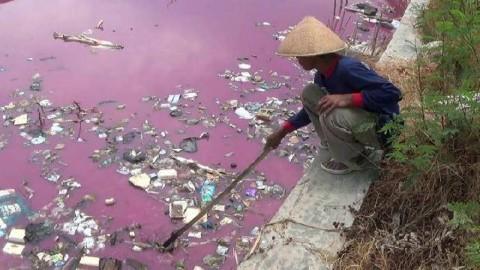 Tercemar Limbah, Sungai di Brebes Berubah Merah Muda