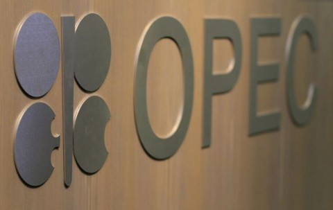 OPEC Membership Will Improve Oil Imports Cooperation: Pertamina