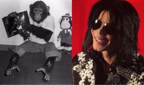 Kisah Simpanse Peliharaan Michael Jackson akan Dibuat Film Animasi