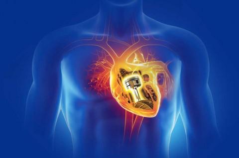 Hati-Hati, Motor Matikmu Bisa 'Sakit Jantung'!