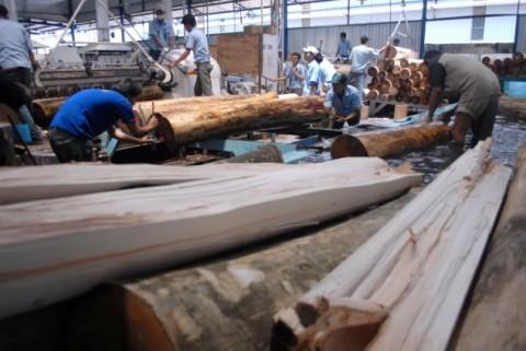 Ratusan Pekerja Pabrik Kayu Olahan Dirumahkan