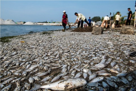 Jakarta Butuh Pemimpin Bervisi Lingkungan