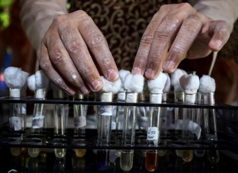 Zat Berbahaya dalam Pangan Masih Ditemukan di Jakarta Selatan