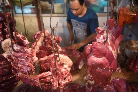 Perum Bulog Masih Lakukan Impor Daging Sapi