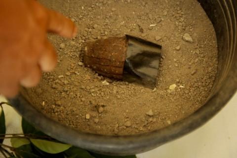 Granat Nanas Aktif Ditemukan di Mampang
