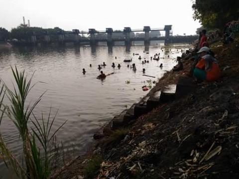 Ribuan Ikan di Sungai Brantas Mati Terpapar Limbah