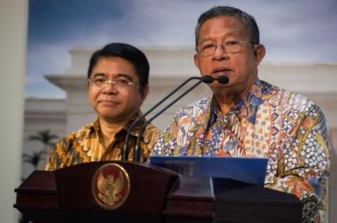 Darmin Minta DPR Tak Anggap Enteng Penyertaan Modal Negara