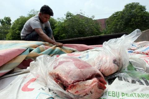Daging Kerbau India Beredar di Jatim
