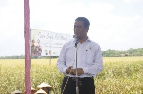 Mentan Haruskan Daerah Pinggiran untuk Impor Bahan Pangan