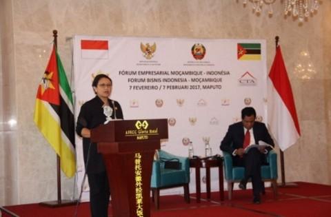 Sambangi Mozambik, Menlu Tawarkan Kereta Buatan Indonesia