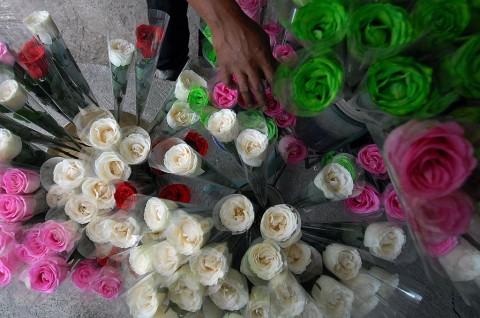Jelang Valentine, Penjualan Bunga Potong Menurun