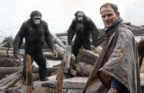 20th Century Fox Ikut Lindungi Simpanse dari Perdagangan Ilegal