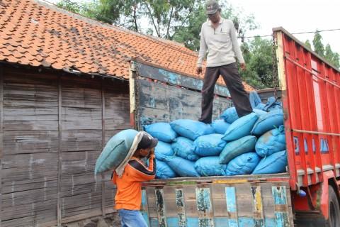 Beda Harapan Petani dan Tengkulak Ihwal Impor Garam