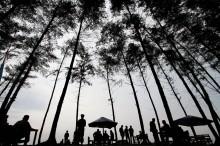 Tingkat Hunian Hotel di Bengkulu Tertinggi di Sumatera