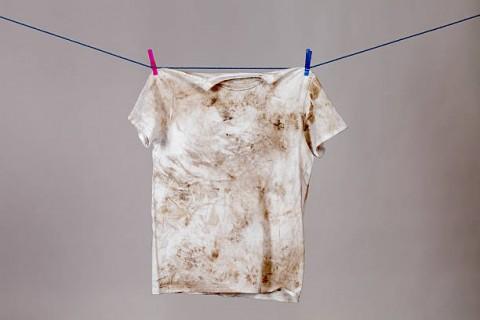 Ini Alasan Mengapa Kutu Kasur Banyak Ditemukan di Pakaian Kotor