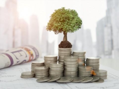 DBS Indonesia Pesimistis Kredit Tumbuh Cepat