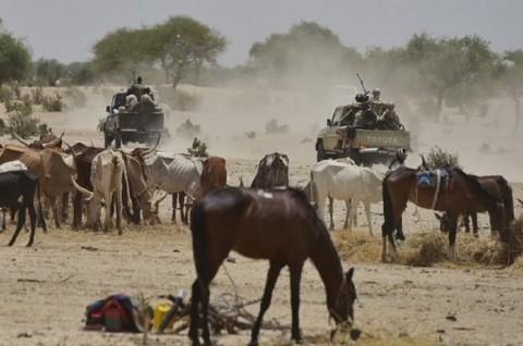 Militan Bunuh 13 Polisi Niger di Perbatasan Mali