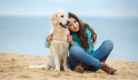 Studi: Orang Lebih Berempati pada Anjing Ketimbang ke Manusia