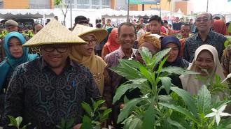 Upaya Pemerintah Menarik Pemuda ke Pertanian