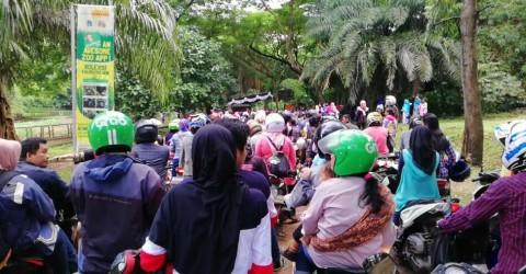 Pemilik Parkir Liar di Ragunan Kecipratan Rezeki