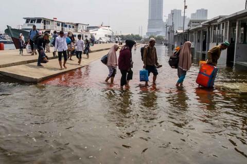Banjir Rob Genangi Muara Angke