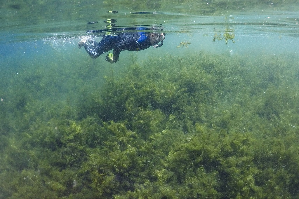 Mengunjungi Destinasi Wisata Mata Air Cisaladah