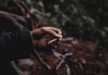 Studi: Coba-coba Merokok Awal Mula Kecanduan