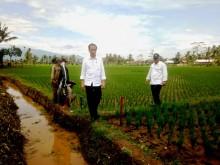 Presiden Tinjau Program Padat Karya di Tasikmalaya